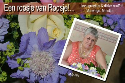 "2014 Nieuw : ""ROSES""..."
