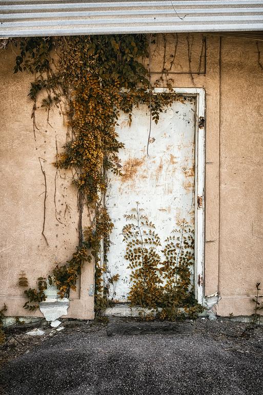 Front Door to the Green