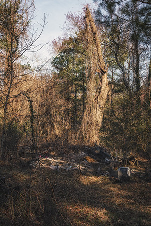 TV Grave Yard 1