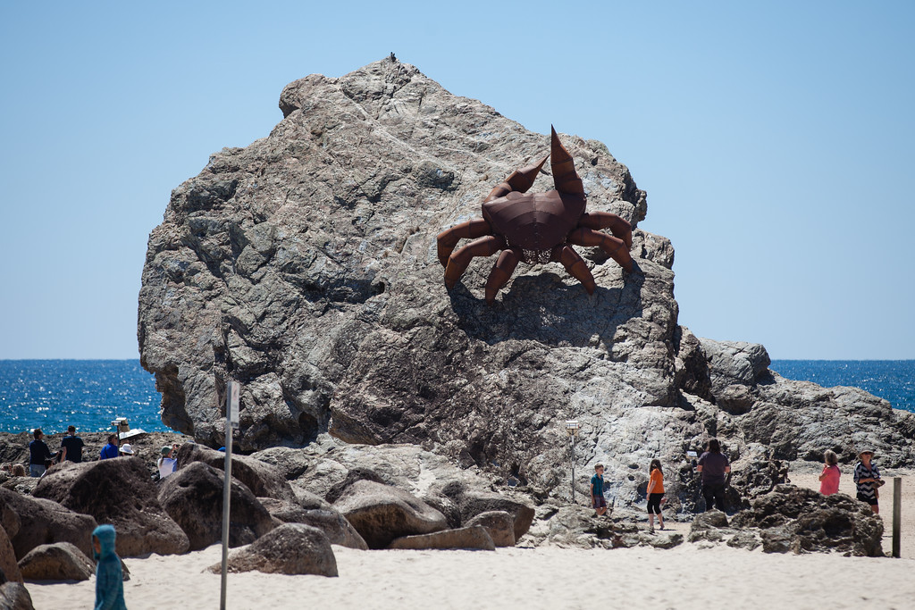 The Crab, by Joy Heylen