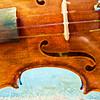Violin 113