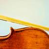 Violin 195 4 29 17