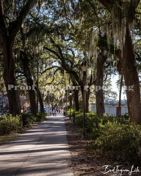 210308 Savannah