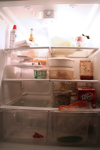Day 4: January 4  I badly need to do some grocery shopping...I think a good amount of what IS in there is not good.