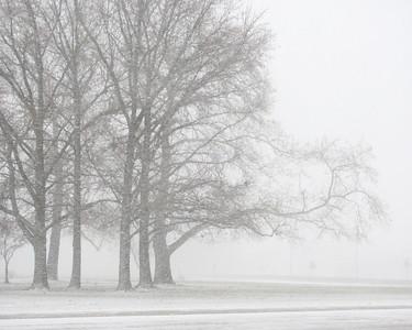 SnowyPrint-1_1369