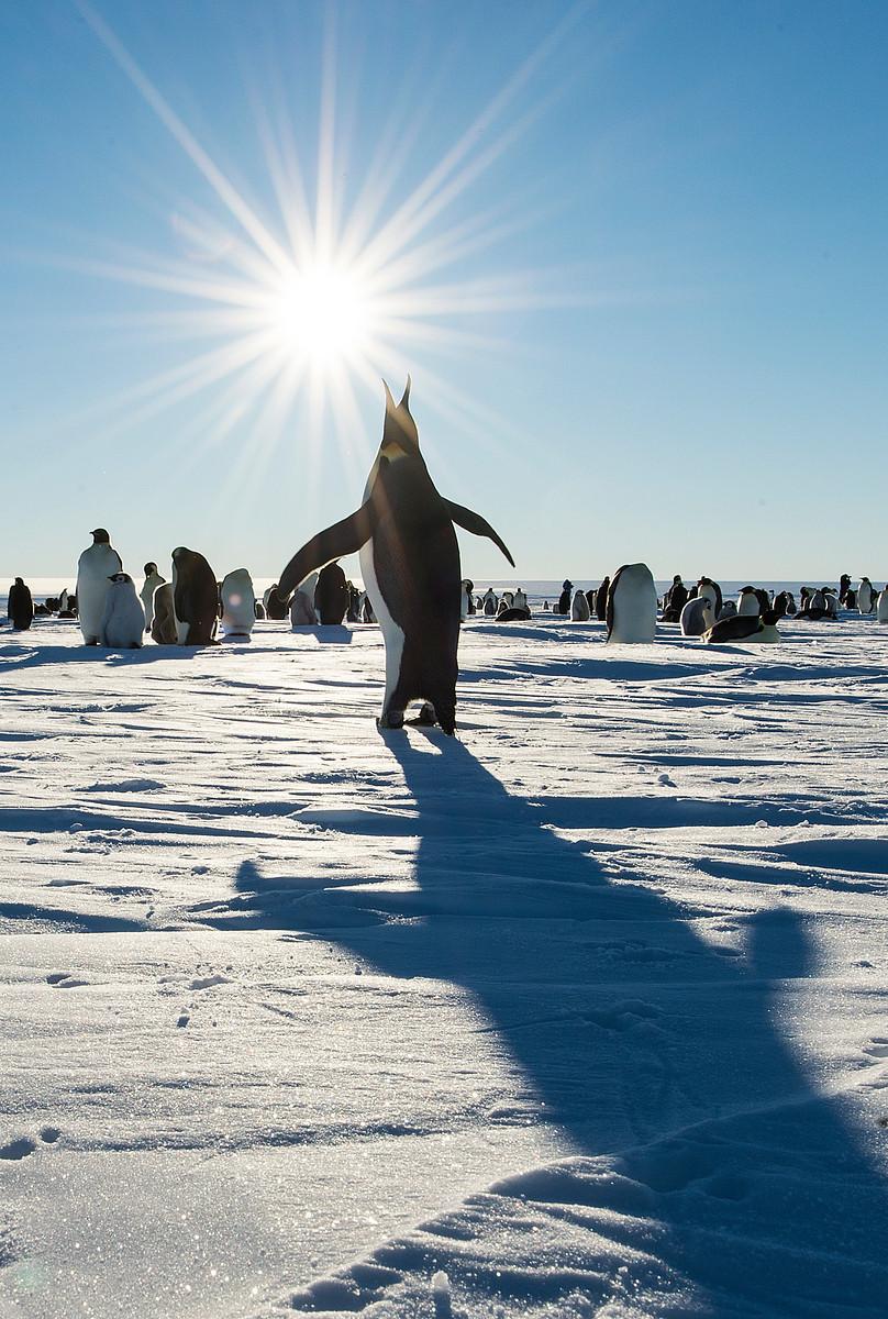 2am in Gould Bay, Antarctica.