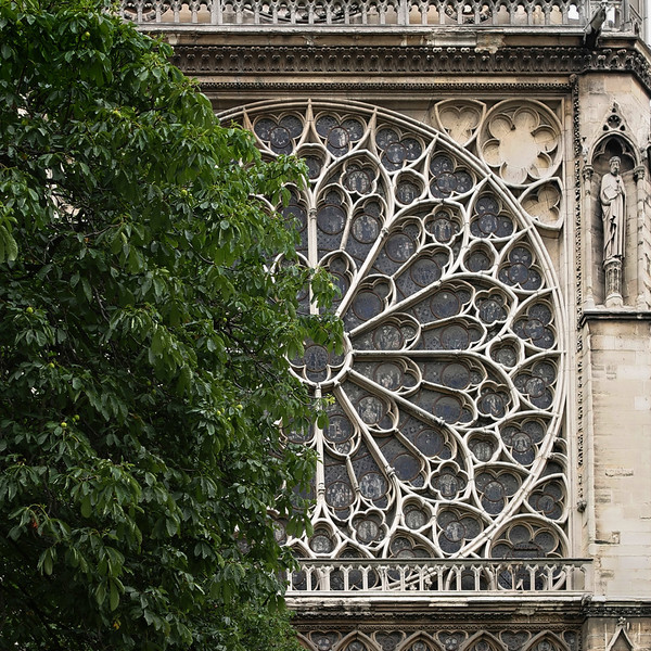 """""""D"""" Notre Dame Cathedral."""