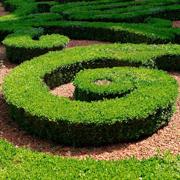 """G"" A courtyard garden in the heart of Paris"