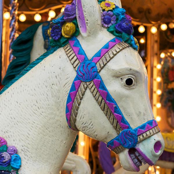 """X"" carousel horse"