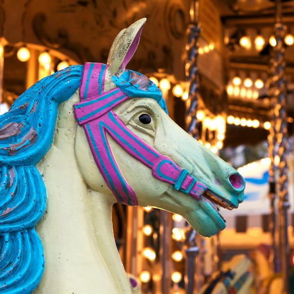 """K"" a carousel horse"
