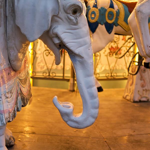 """J"" elephant on a carousel ride"