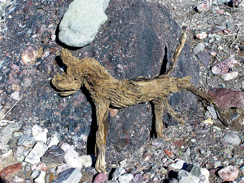 """The Dog"" Accidental form of a root laying on the desert floor. Near Nelson. Nevada. 2004"