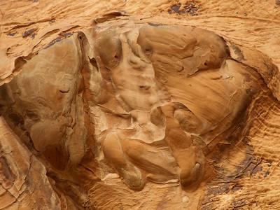 HARLEQUIN Red sandstone; Mohave desert, Nevada.  2005