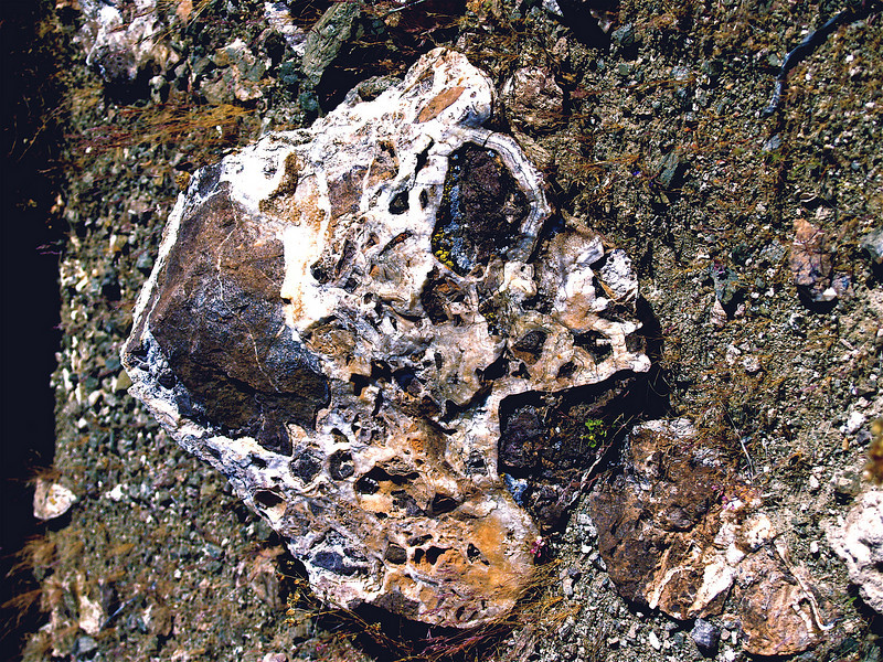 "'She Turned a Beauty""<br /> She was a Jewel.  Gold-bearing breccia. Near Nelson, Nevada. 2005."