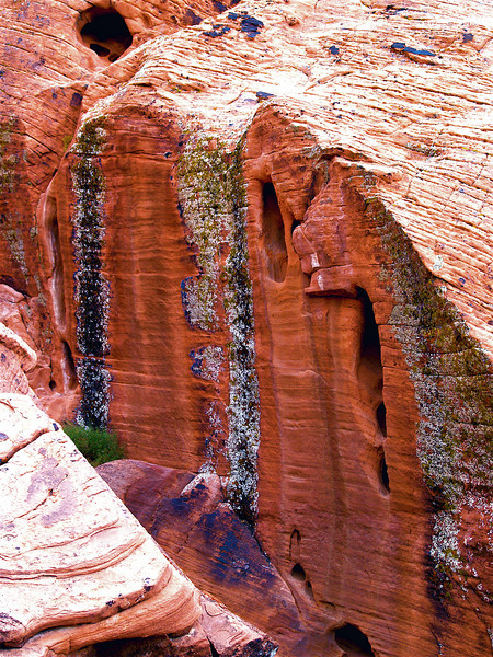 """Homage to NASA and the Hubble Telescope"" Red Sandstone Cliffs with green and multicolored Lichen and dark oxide Crusts. Mohave Desert, Nevada"