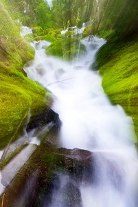An experiment with zoom-during-exposure on an unnamed waterfall in Mount Rainier National Park, Washington