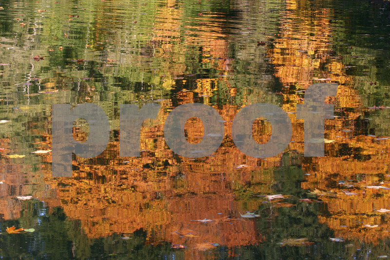 Fall colors reflected in the water of a small cove.