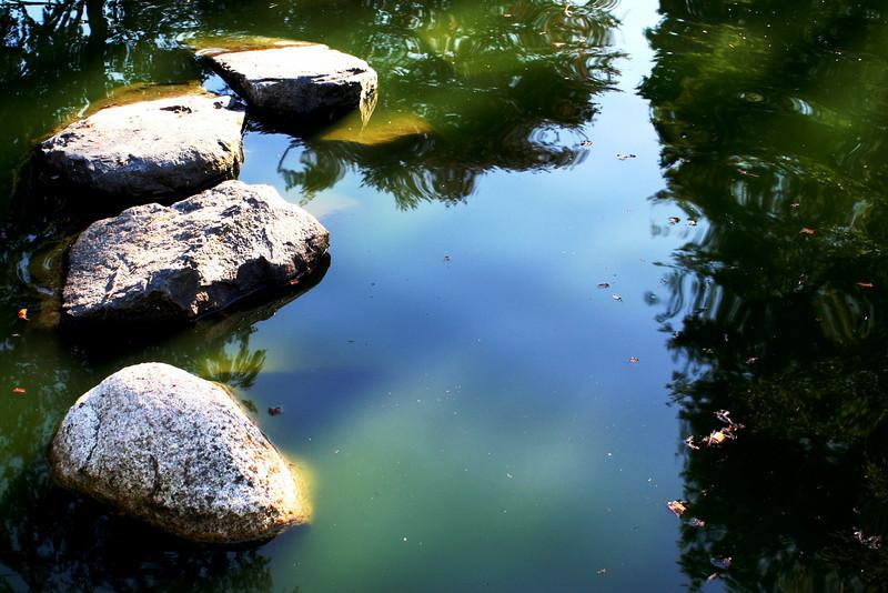 Meditation #