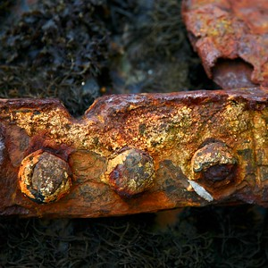 Rust in the sea