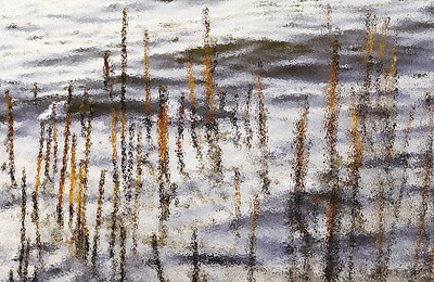 guilford, beach, reeds, water, beach, ocean, painting, abstract, art, watercolor, grass, grasses