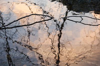 """""""Reflective Abstract ii"""""""