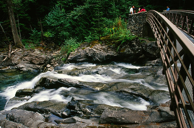 Foot Bridge Over the Stream