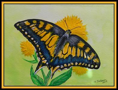 1-Common Swallowtail, Papilio machaon - Europe  140x190, mixed media, sep 8, 2018 adopted Kiss Szilard, Snombathely, Hungary, sep 15, 2018 DSCN9752