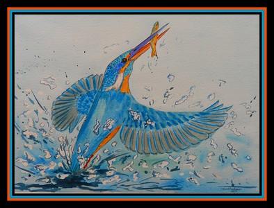 1-European Kingfisher, 9x12, watercolor, sep 17, 2017  adopted Vicente Esteller, Seville, Spain, oct 15, 2018 DSCN9954