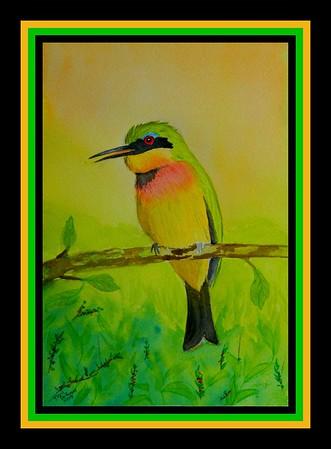 1-Little Bee-eater, 6x9, watercolor, june 2, 2017 - adopted Masasa Motlamedi  Maum, Botswana, june 2, 2018  DSCN00481