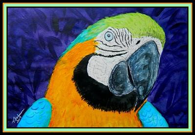 1B - Blue & Gold Macaw #5, 8 5x11, watercolor, acrylic, ink & pencil, april 24, 2019 DSCN9975B