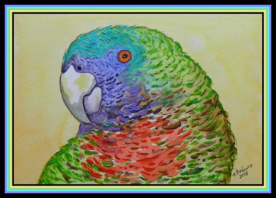 ##1-Red-necked Parrot, Amazona arausiaca, Dominica  150x230, watercolor, acrylic & ink, oct 6, 2018 adopted feb 12, 2019 DSCN9919A