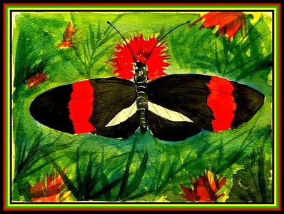 Guatemala City, Guatemala - Postman, Heliconius melpomene, 150x115mm, watercolor, march 19, 2015. Adopted by Osbin Aeron De Leon, Guatemala City, Guatemala, may 12, 2018. Rec'd OK