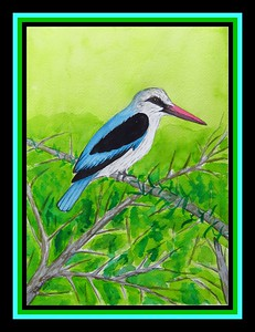 Hampshire, England - Woodland Kingfisher, 9x12, watercolor, may 27, 2017. Gift to Rosalie Courage, Hampshire, UK, may 28, 2017. Rec'd OK
