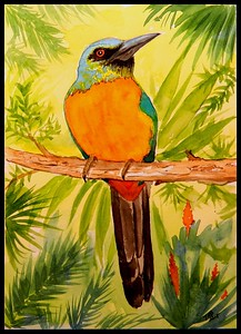 Emerald Valley, Honduras - Great Jacamar - Honduras. 165x205mm, watercolor, dec 4, 2015. Adopted by Robert Gallardo, Honduras,  may 11, 2018. Rec'd OK