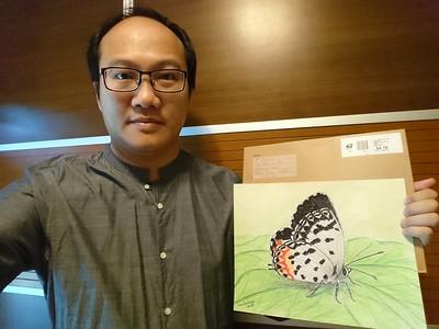Hong Kong - Talicada nyseus lami subsp, Hainan Island, China, 280 x 355mm, color pencil, graphite & ink, july 16, 2018.adopted Pkil Lo, Hong Kong, oct 19, 2018.