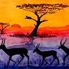 Springboks Sunset, 12x23, watercolor, june 3, 2017 DSCN00491