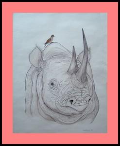 Rhino, 10x13, color pencil & pen, 1981
