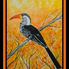 1-Southern Red-billed Hornbill, Victoria Falls Safari Lodge, oct 12, 2016  11x15, watercolor, may 27, 2017 DSCN00331