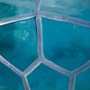 17  G Turtle Ice Texture