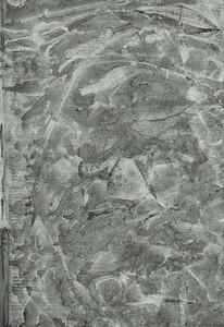 citrasolv 4
