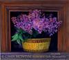 Lilacs copy
