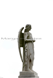 Rosehill Cemetery. handless angel