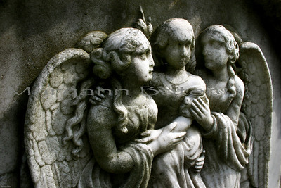 Rosehill Cemetery detail.