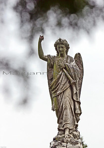 Angel with star. Rosehill Cemetery.