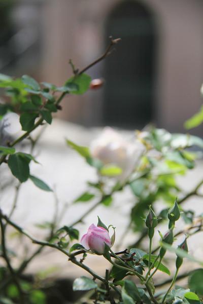 April Photography Class 041