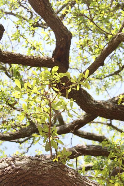 April Photography Class 053