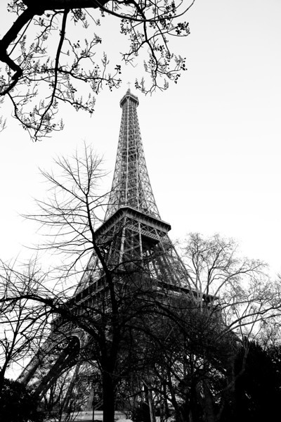 Eiffel Tower - Paris<br /> March 2012<br /> Canon 5D MkII 24-70F2.8L