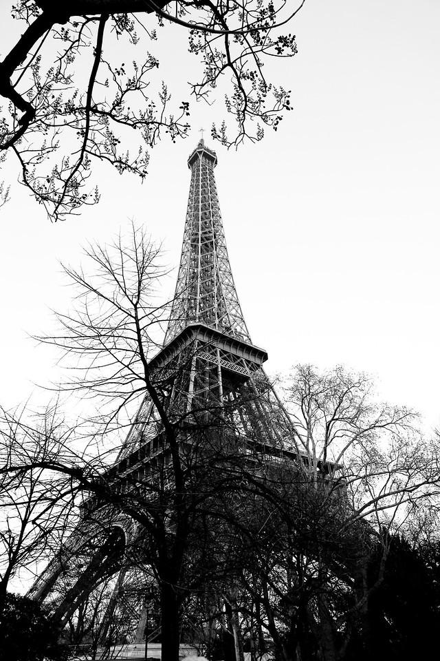 Eiffel Tower - Paris<br /> March 2012<br /> Canon 5D MkII 24-70F2.8L
