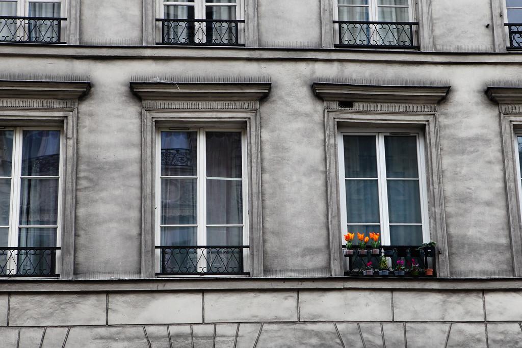 Paris Apartments <br /> February 2012