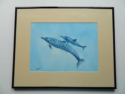 29 Spinner Dolphins, Napali Coast, Hawaii - watercolor, 10x14. $200